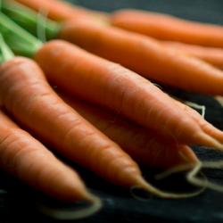 web-zanahorias-400